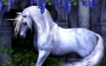 Fantasy - Unicorn Wallpapers and Backgrounds ID : 356147