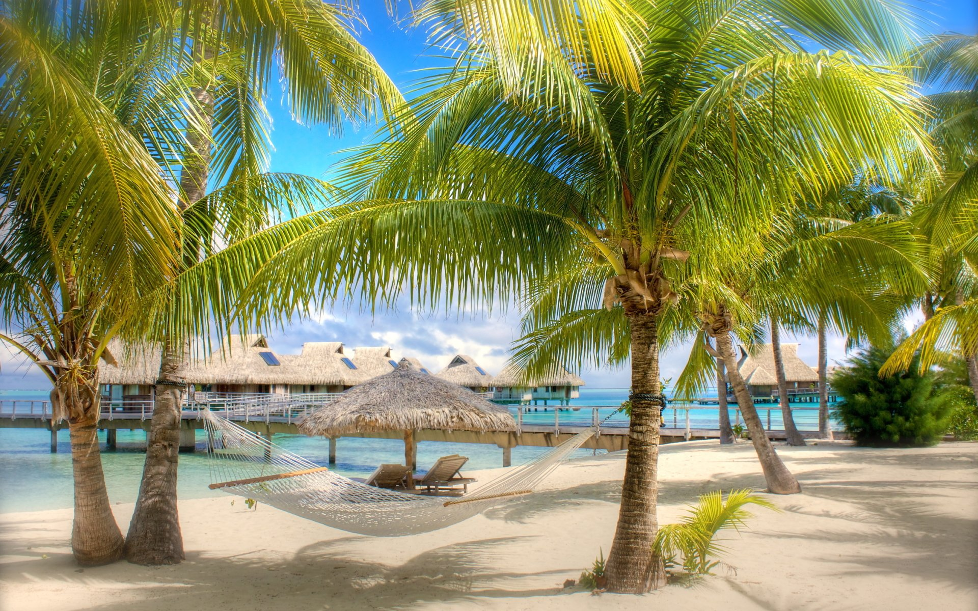 Photography - Holiday  Tropical Tree Palm Tree Hut Beach Wallpaper