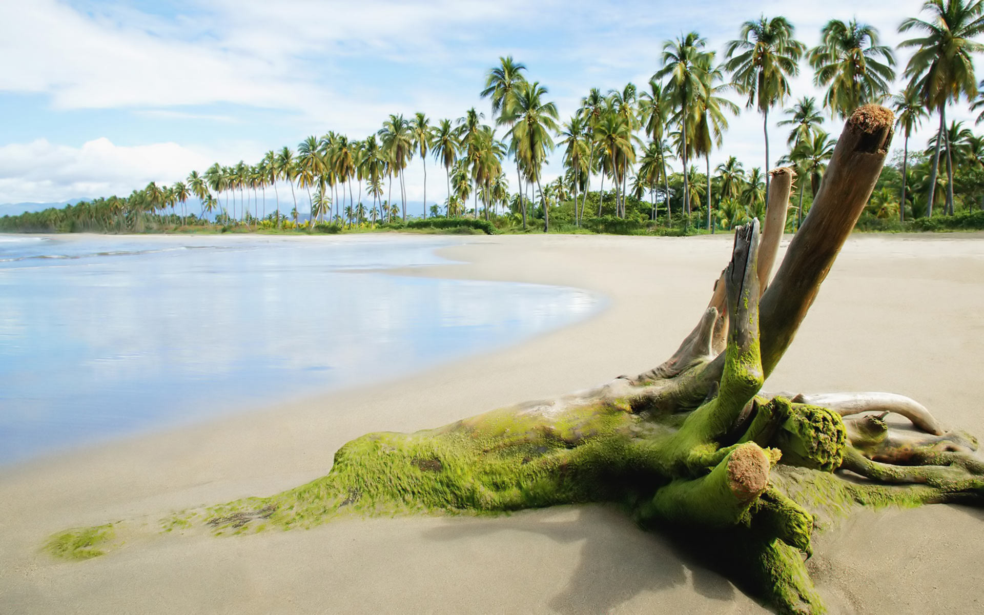 Plage full hd fond d 39 cran and arri re plan 1920x1200 for Image nature hd gratuit