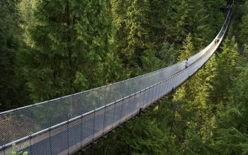 Man Made - Capilano Suspension Bridge  Wallpapers and Backgrounds ID : 370768