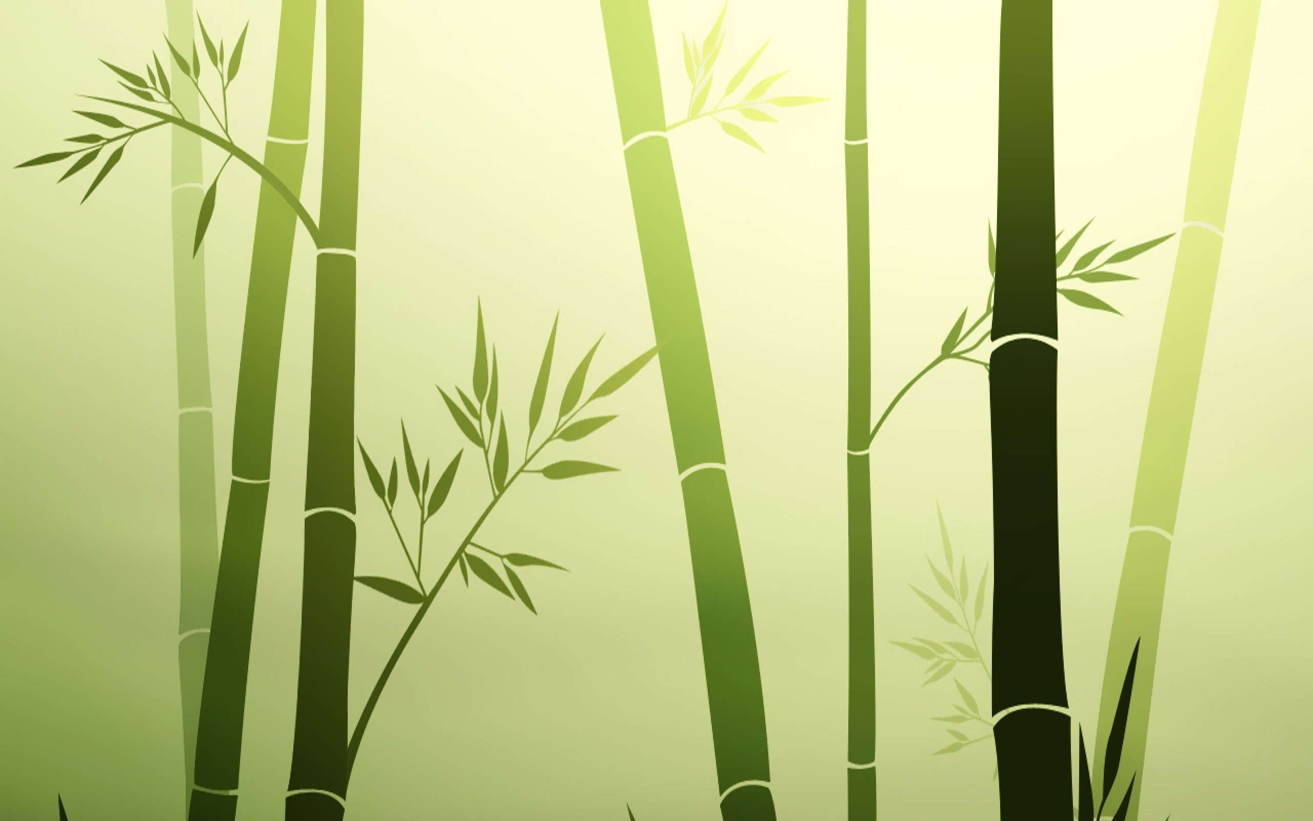 Wall Paint Bamboo Design : Bamboo simplistic hd wallpapers backgrounds