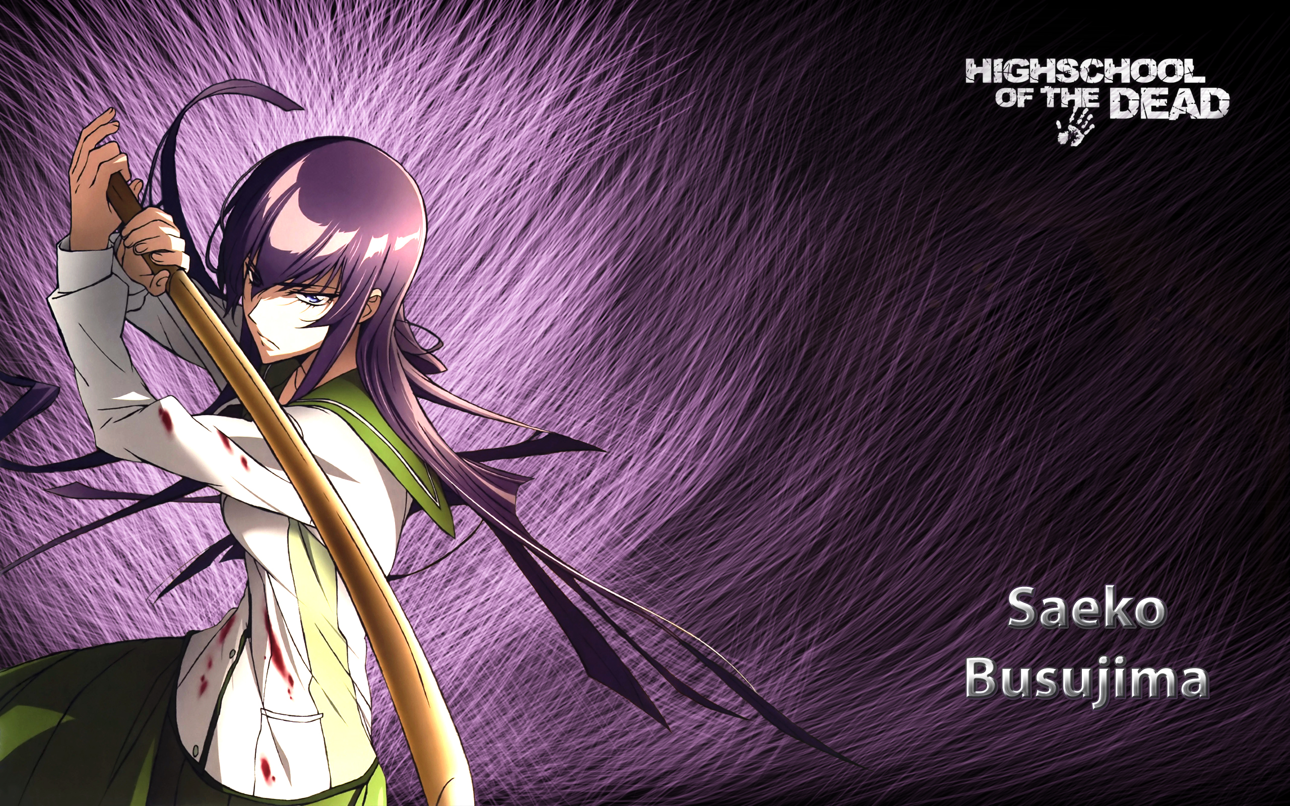 Saeko Busujima Full HD Wallpaper And Background Image