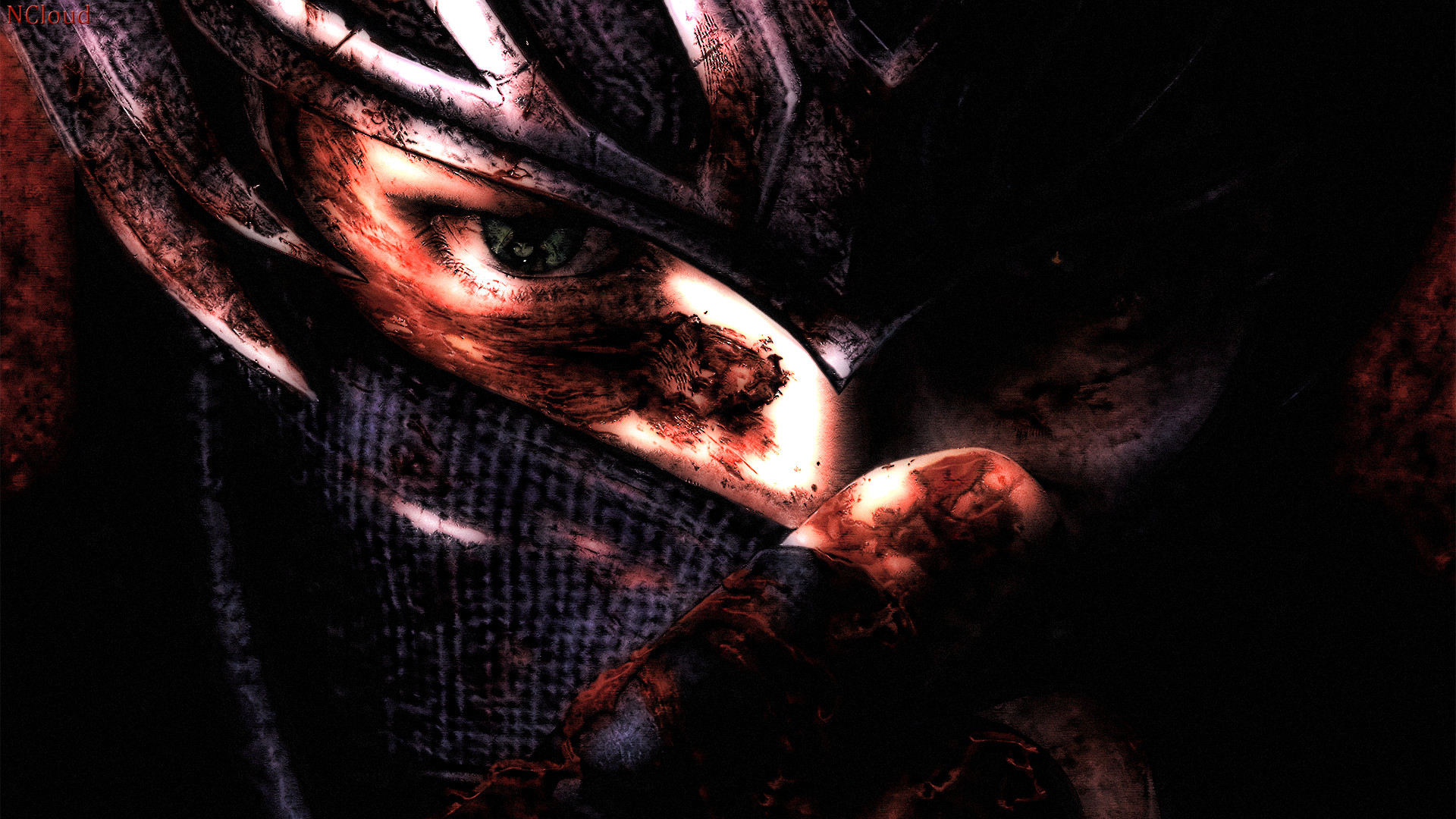 ninja gaiden wallpapers for desktop - photo #22