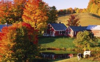 осень фото в деревне