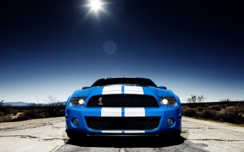 Vehicles - 2010 Ford Mustang Shelby Gt500 Wallpapers and Backgrounds ID : 376877