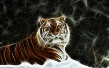 Artistic - Tiger Wallpapers and Backgrounds ID : 379675