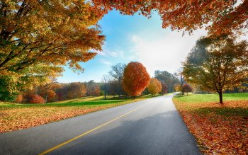 Man Made - Road Wallpapers and Backgrounds ID : 382452