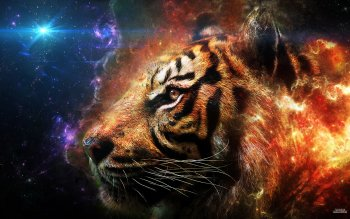 Artistic - Tiger Wallpapers and Backgrounds ID : 386947