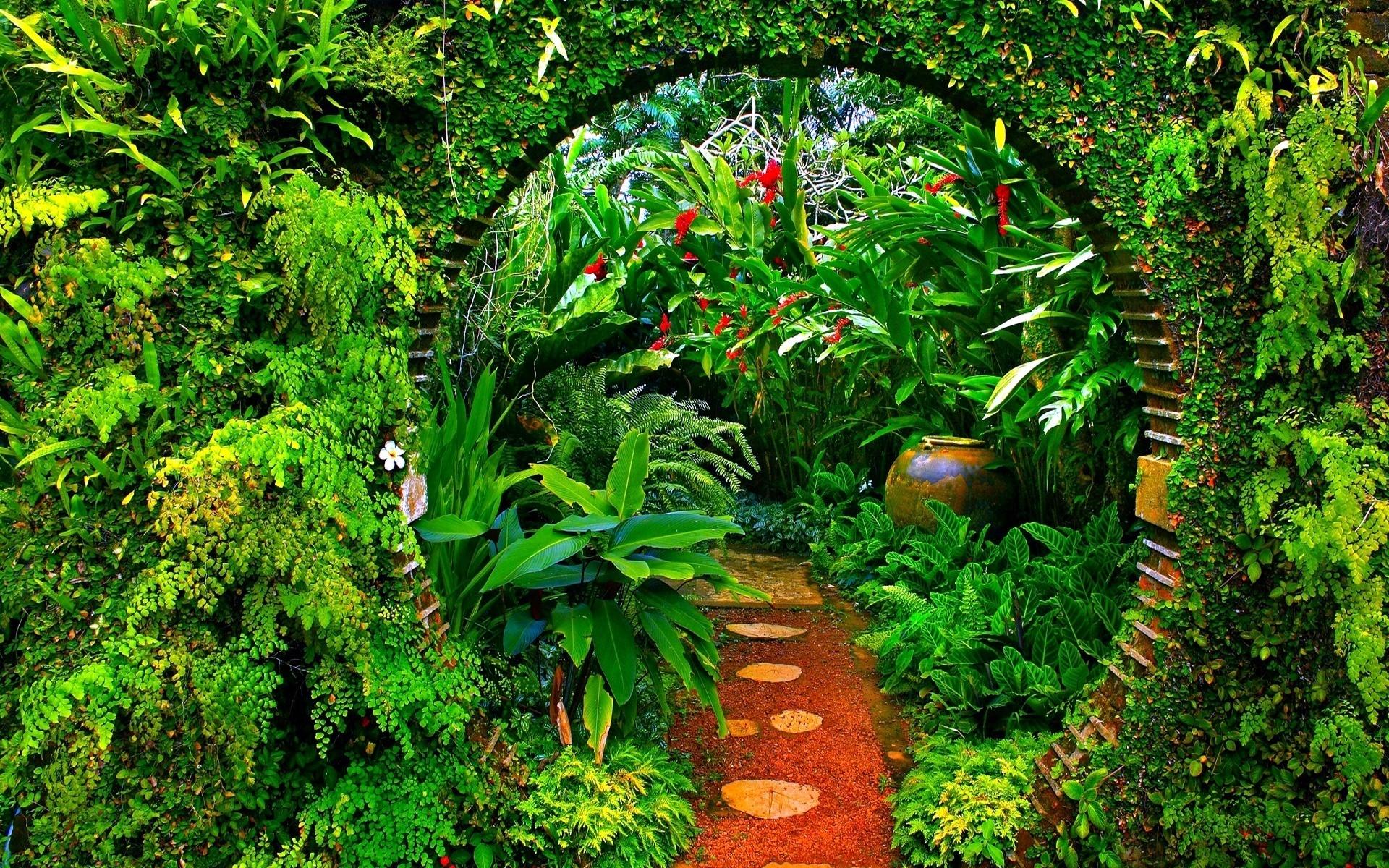 garden safari painel greenhouse festa wallpapers 2x1 plants 50x1 desktop backgrounds outdoor wide jungle aesthetic lona elo7 infantil event goa