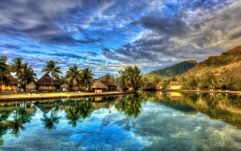 Fotografie - Tropical Wallpapers and Backgrounds ID : 388517