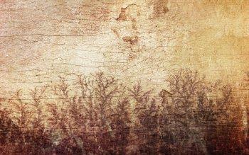 HD Wallpaper | Background ID:388913