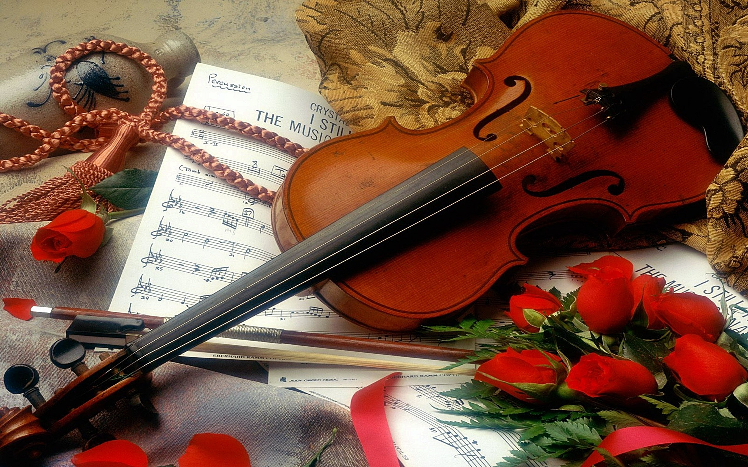 Violin Full HD Wallpaper and Background | 2560x1600 | ID ...