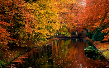 Photography - Autumn Wallpapers and Backgrounds ID : 391481