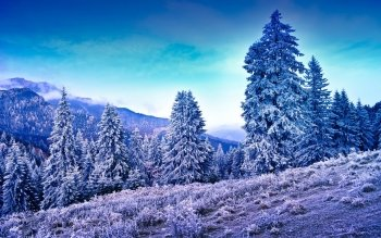 Earth - Winter Wallpapers and Backgrounds ID : 392204