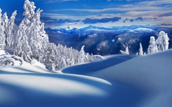 Earth - Winter Wallpapers and Backgrounds ID : 392286