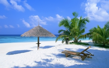 Photography - Tropical Wallpapers and Backgrounds