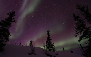 Earth - Aurora Borealis Wallpapers and Backgrounds ID : 395646