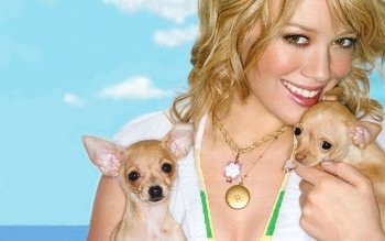 Berühmte Personen - Hilary Duff Wallpapers and Backgrounds ID : 396512