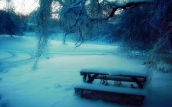 Photography - Winter Wallpapers and Backgrounds ID : 398083