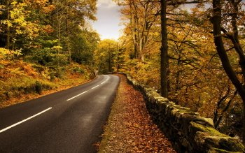 Man Made - Road Wallpapers and Backgrounds ID : 401711