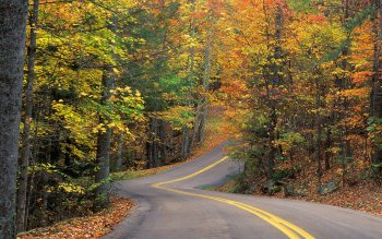 Man Made - Road Wallpapers and Backgrounds ID : 404235