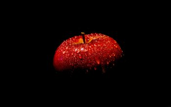 Alimento - Apple Wallpapers and Backgrounds ID : 404656
