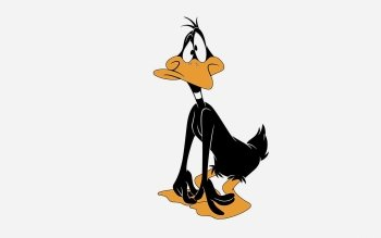 Cartoon - Daffy Duck Wallpapers and Backgrounds ID : 404687