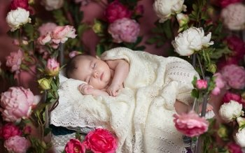 Fotografie - Baby Wallpapers and Backgrounds ID : 404895