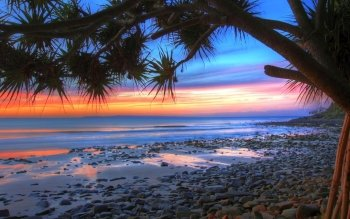 Earth - Beach Wallpapers and Backgrounds ID : 405100