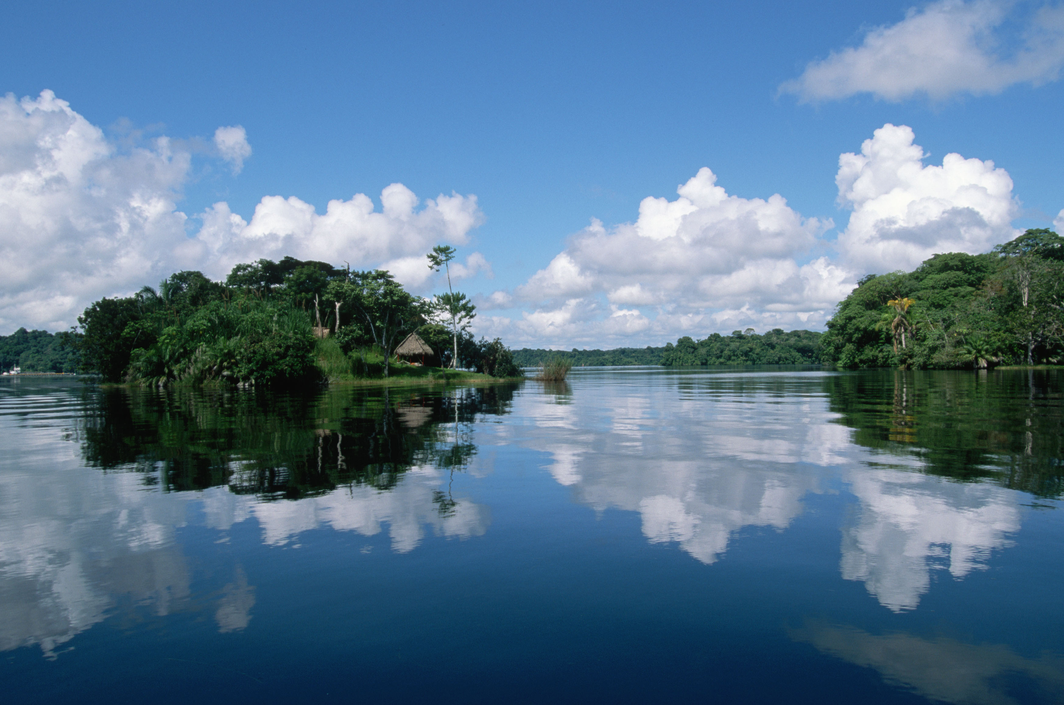 1 amazon river hd wallpapers backgrounds wallpaper abyss - Amazon wallpaper hd ...