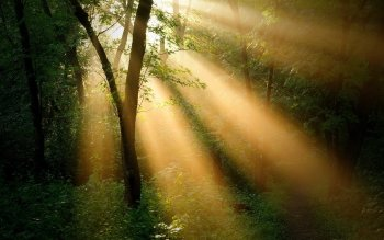 Earth - Sunbeam Wallpapers and Backgrounds ID : 406953