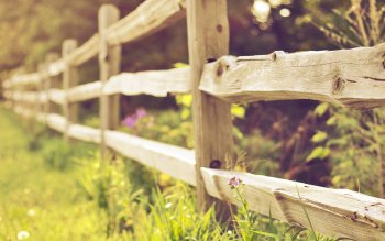 Man Made - Fence Wallpapers and Backgrounds ID : 408439