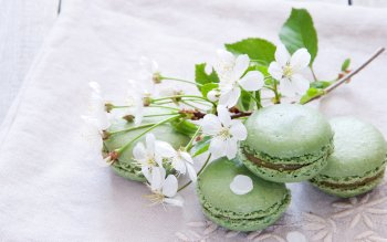Alimento - Macaron Wallpapers and Backgrounds ID : 408920