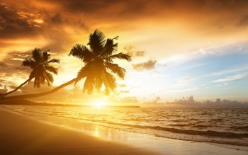 Earth - Beach Wallpapers and Backgrounds ID : 413619
