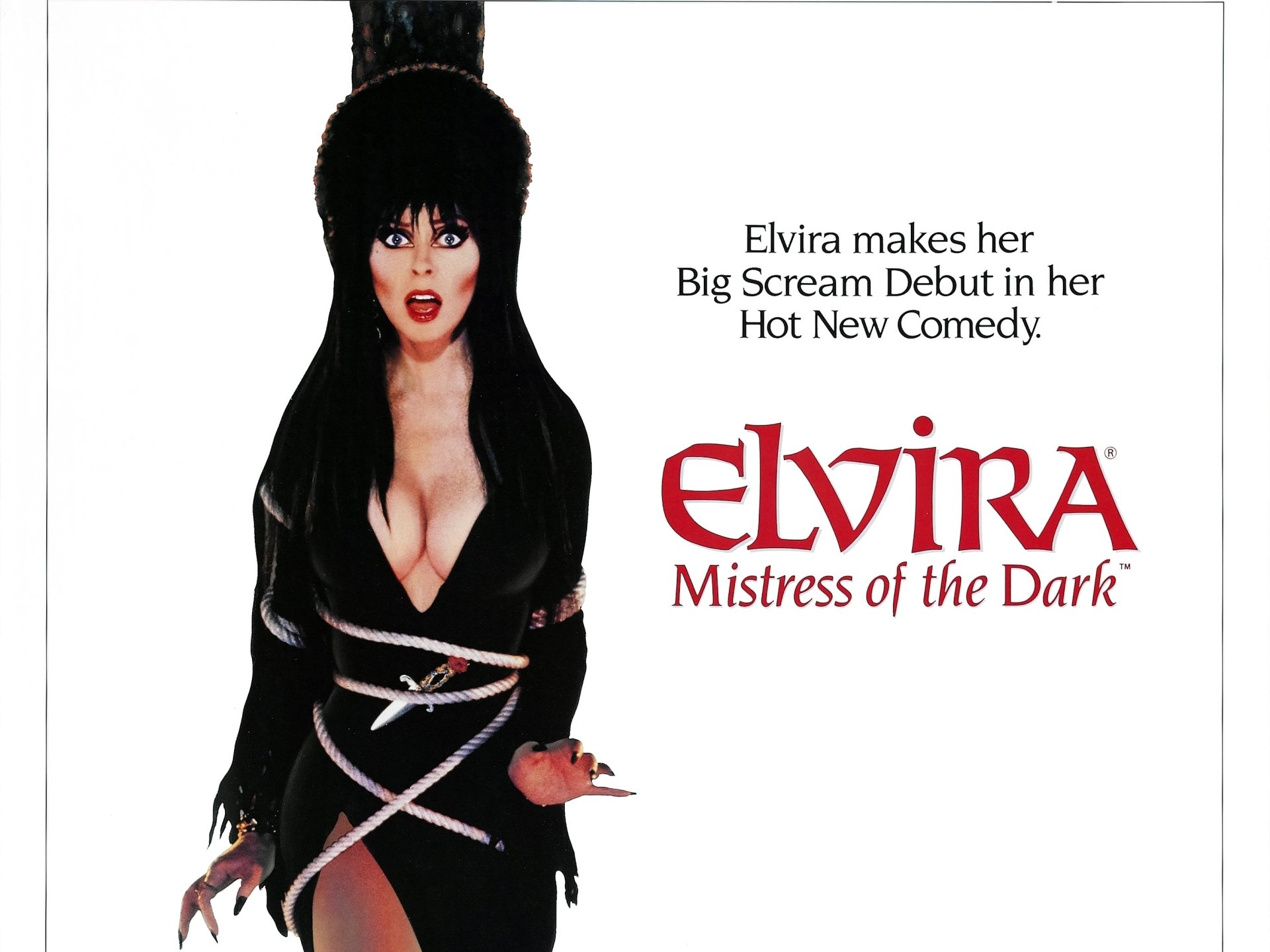 1 Elvira Mistress Of The Dark Hd Wallpapers Background Images