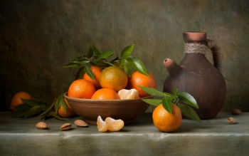 Food - Still Life Wallpapers and Backgrounds ID : 414252