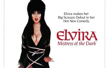 Movie - Elvira: Mistress Of The Dark Wallpapers and Backgrounds ID : 414436