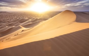 Earth - Desert Wallpapers and Backgrounds ID : 414651