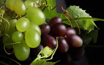 Alimento - Grapes Wallpapers and Backgrounds ID : 414999