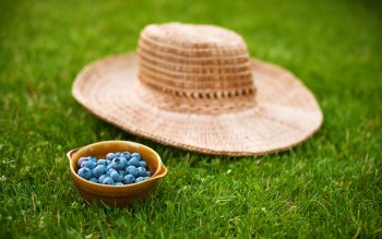 Alimento - Blueberry Wallpapers and Backgrounds ID : 415330