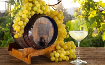 Alimento - Wine Wallpapers and Backgrounds ID : 416173