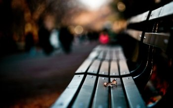 Man Made - Bench Wallpapers and Backgrounds ID : 417262