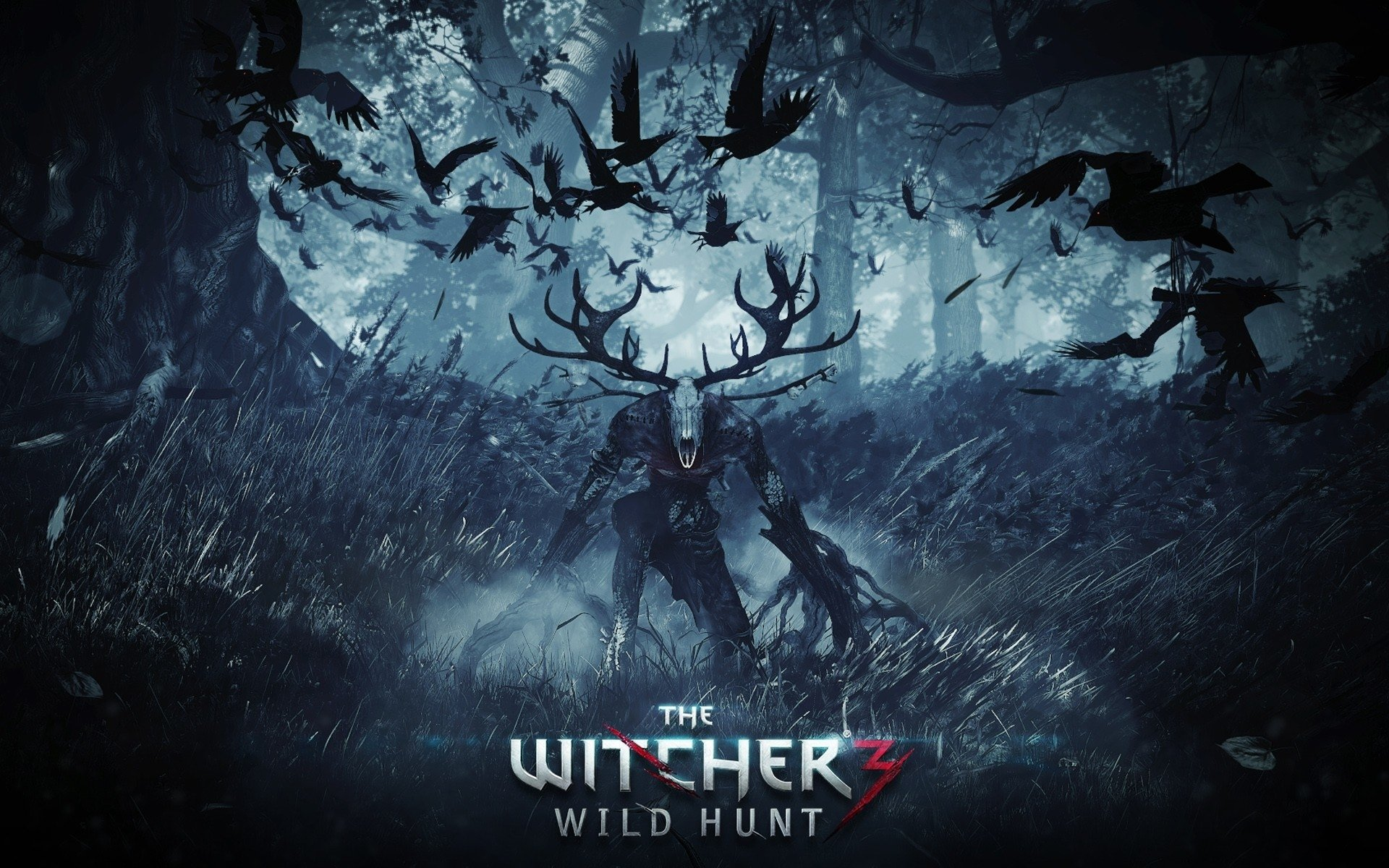 709 The Witcher 3 Wild Hunt Hd Wallpapers Background Images