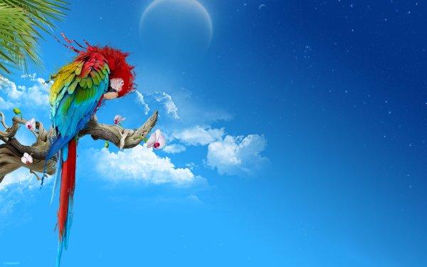 Animales Ara chloropterus Aves Loros Loro Cielo Ave Azul Guacamayo Fondo de pantalla HD | Fondo de Escritorio