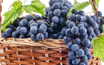Alimento - Grapes Wallpapers and Backgrounds