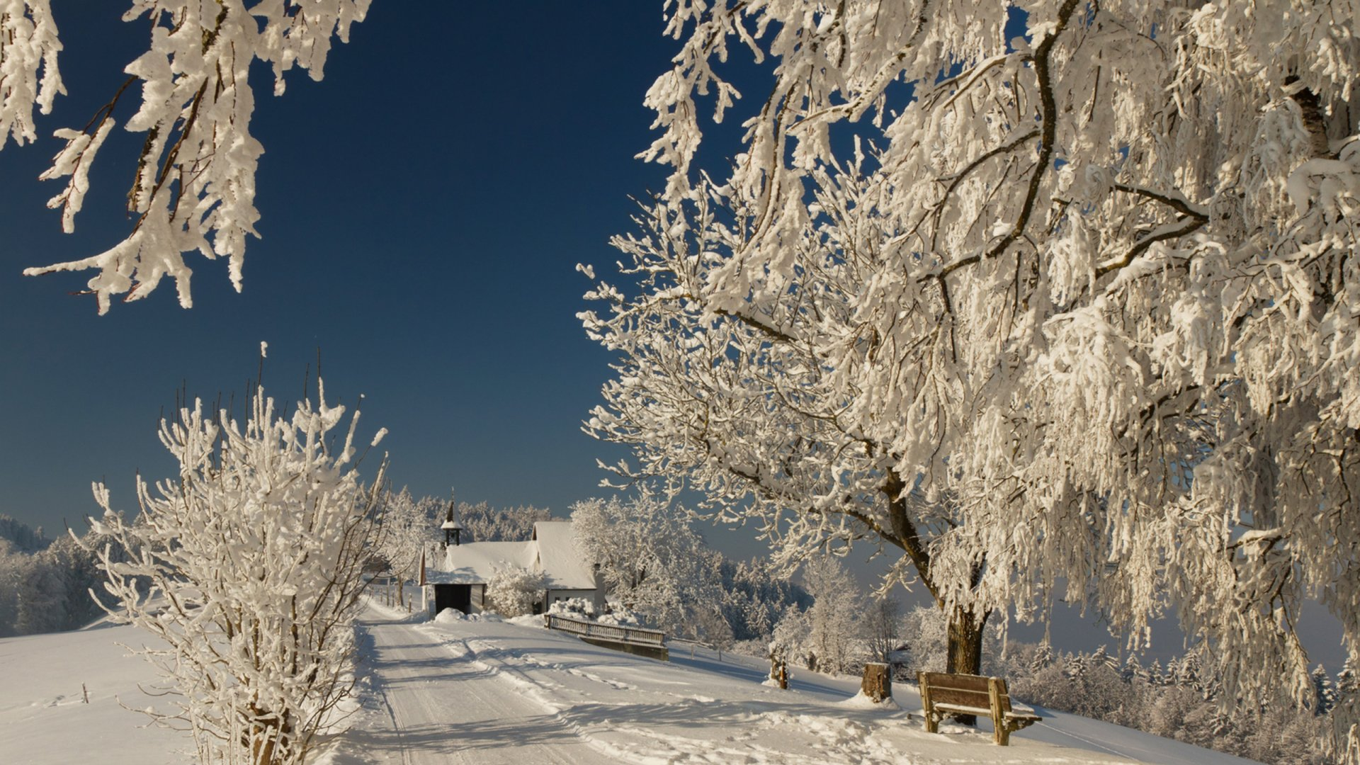 Photography - Winter  Bench Cold Snow Wallpaper
