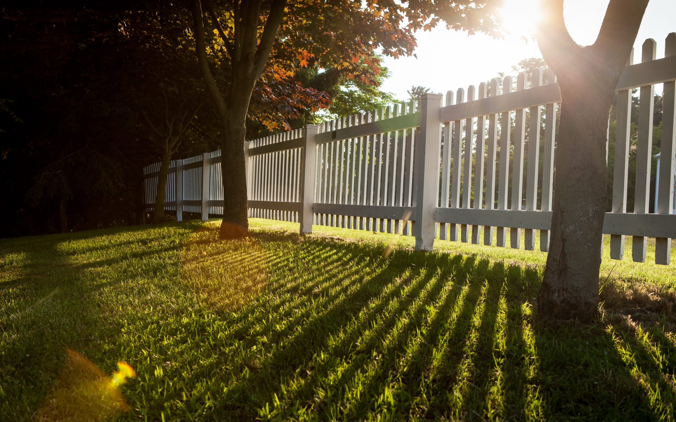Fence HD Wallpaper   Background Image   2560x1600   ID ...