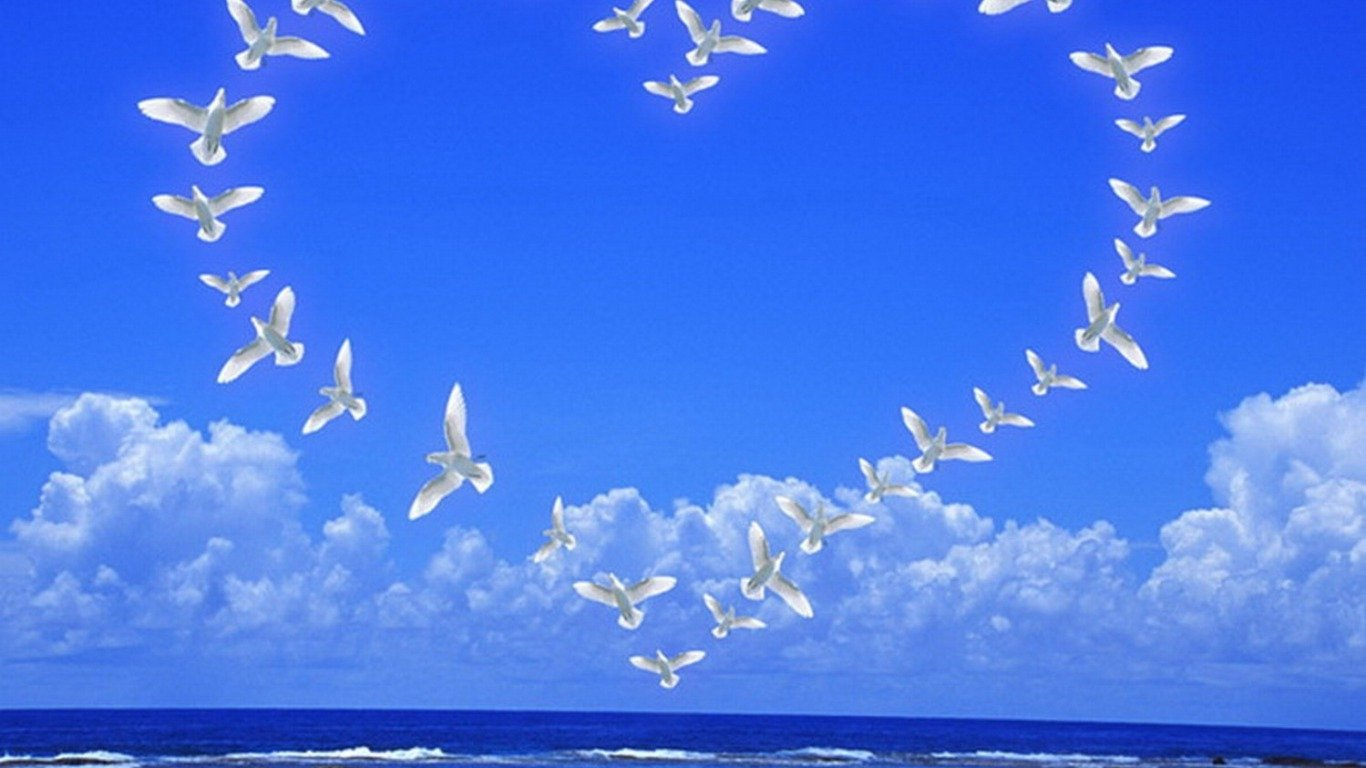 Doves Tag wallpapers Peaceful Moon Firefox Persona Doves Birds