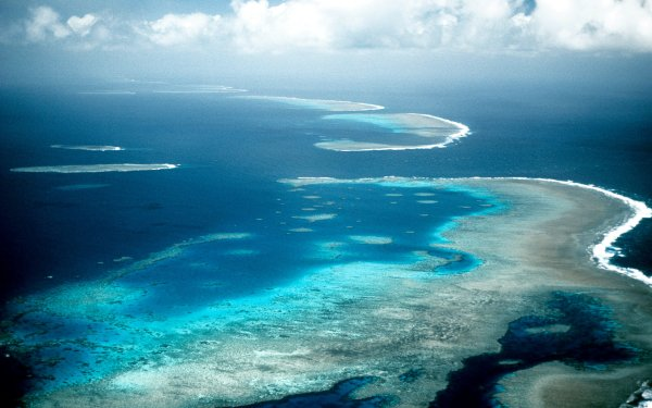 Earth Great Barrier Reef Reef HD Wallpaper   Background Image