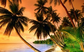 Earth - Beach Wallpapers and Backgrounds ID : 427757